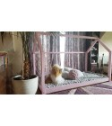 House bed Bella Pink 90 x 190cm